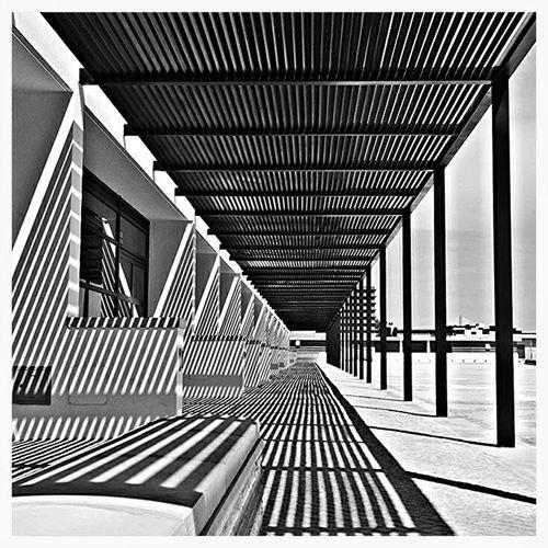 Light Hardlight Shadow Lines Arquitecture Black & White