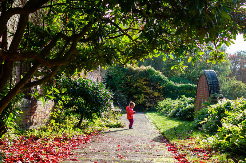Side view of girl walking on footpath amidst trees