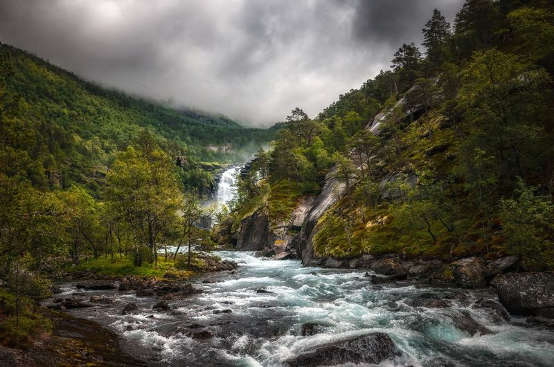 Beautiful landscape in Norway Waterfall River River View Landscape Landscape_Collection EyeEm Nature Lover EyeEm Best Shots Tree Water Mountain Forest Social Issues River Waterfall Sky Landscape Storm Cloud Dramatic Sky Atmospheric Mood Stream - Flowing Water