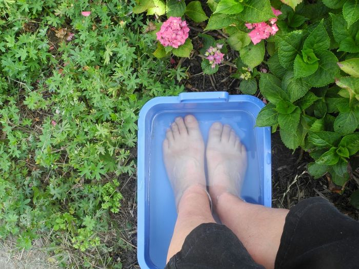 Barefoot Enjoying Life Summer ☀ Garden Take Photos Have Fun Things I Like The Essence Of Summer