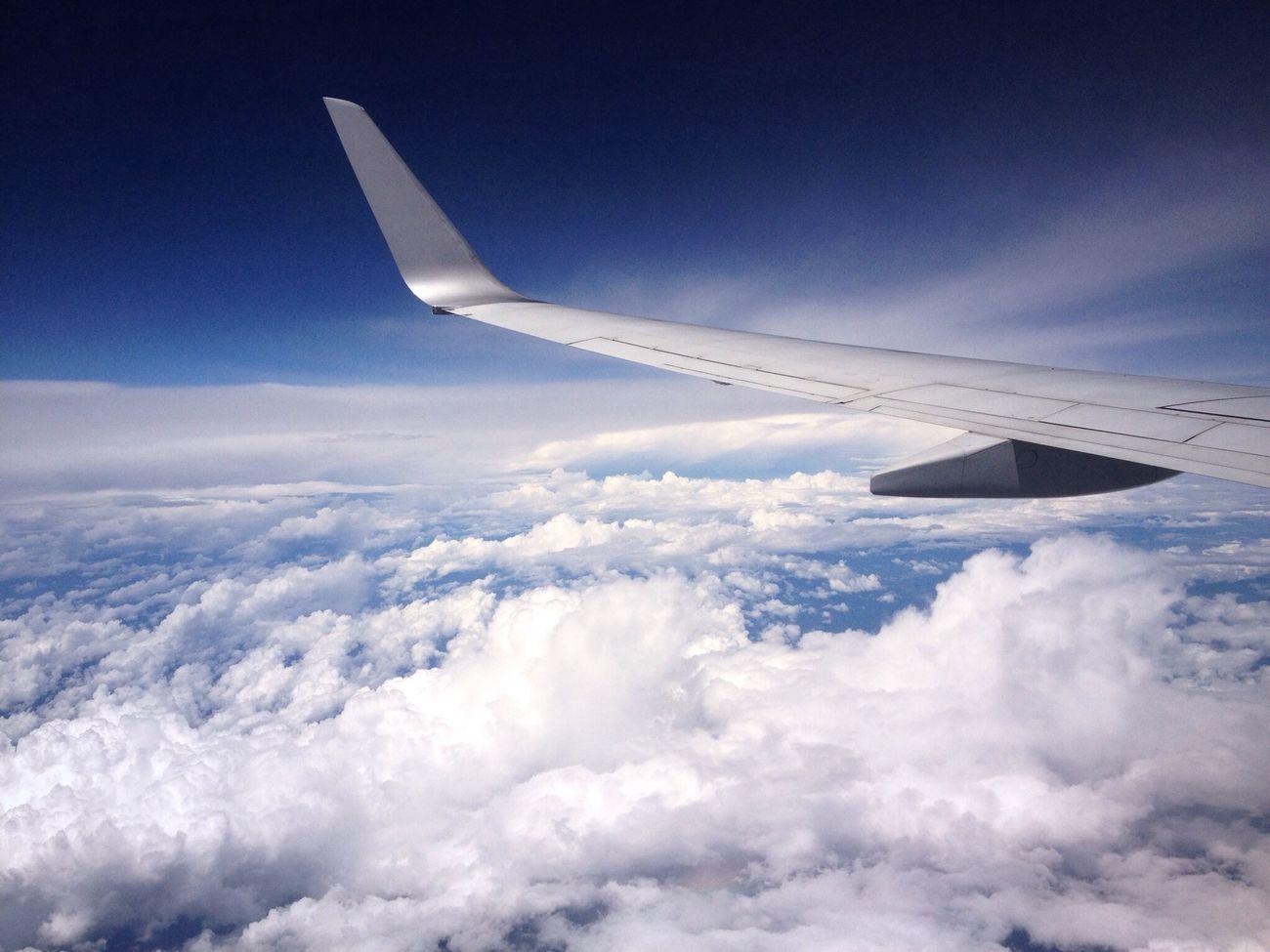Flight for