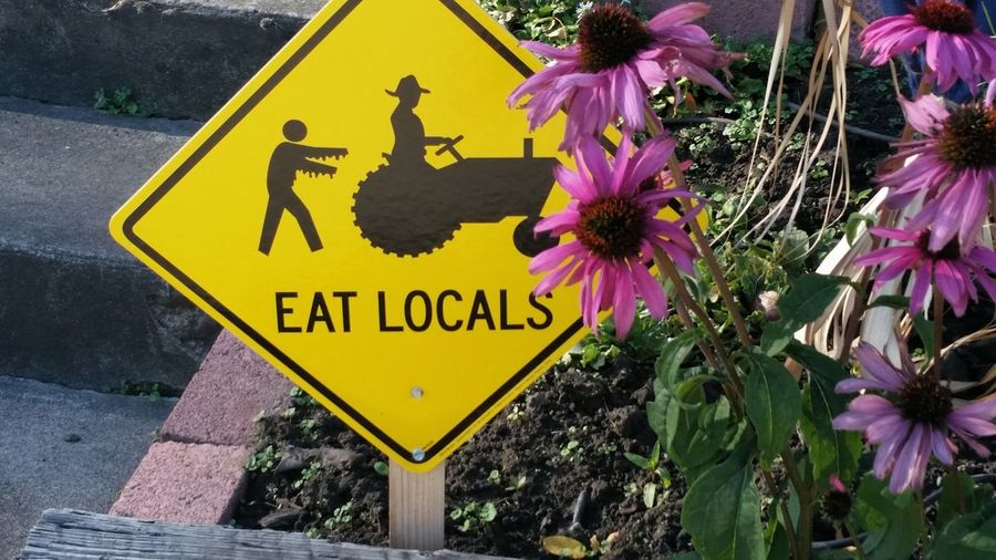 Eat Locals Humor Colour Of Life Flowers Sign Here's Your Sign Sol Colour Of Life, Hello World Enjoying Life Nature Awesome