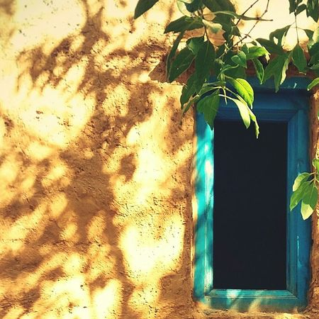 Windows Blue Windows Sunlight House Architecture Vernacular Architecture Building Exterior Close-up Outdoors Architecture Day Nature Earth Architecture The Architect - 2018 EyeEm Awards