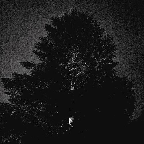 Right & Pride in the darkness ✊🏽 Darkness Darkside Light In The Darkness Minimalism Smiling Just Because Melancholy Nature Photography