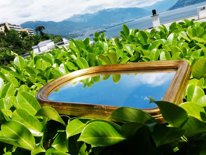 il cielo di Brissago oltre lo specchio Samsungphotography Cloud - Sky EyeEm Selects Mountain Rural Scene Leaf Agriculture Field Banana Tree Tree Sunlight Farm Sky