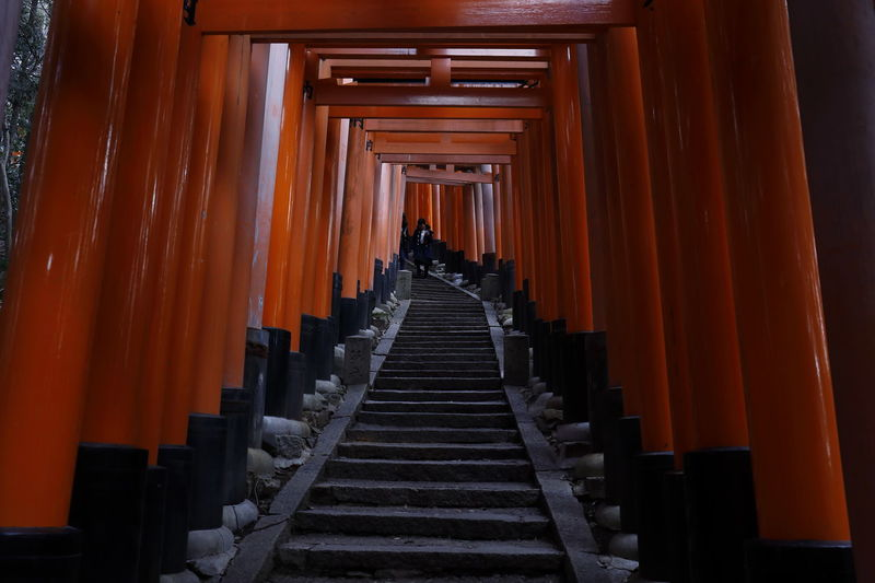 Japan Japan Photography Japanese Culture Japanese Temple Minimalist Architecture Red Religion And Tradition Road Tranquility Architectural Column Minimal Minimalism Minimalist Photography  Minimalobsession Red Color Religion Religious Architecture Scenics Spirituality Temple Temple - Building Temple Architecture The Way Forward Tranquil Scene Way