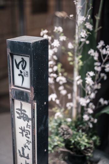 Close-up of text on metal pole