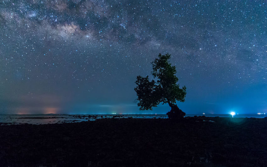 milky way rise above trees Star - Space Astronomy Space Night Galaxy Sky Scenics - Nature Beauty In Nature Milky Way Tranquility Tranquil Scene Water Star Nature Land Star Field Sea Tree Idyllic No People Outdoors Space And Astronomy
