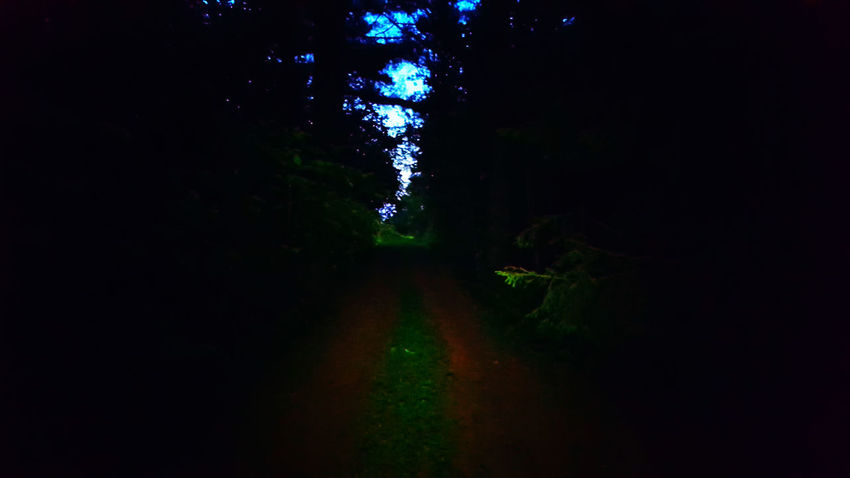 Ghost Ghostly Ghostly Road In The Forest In The Woods Alone In The Dark Alone In The Woods Taking Photos Check This Out Deadly Road On The Way