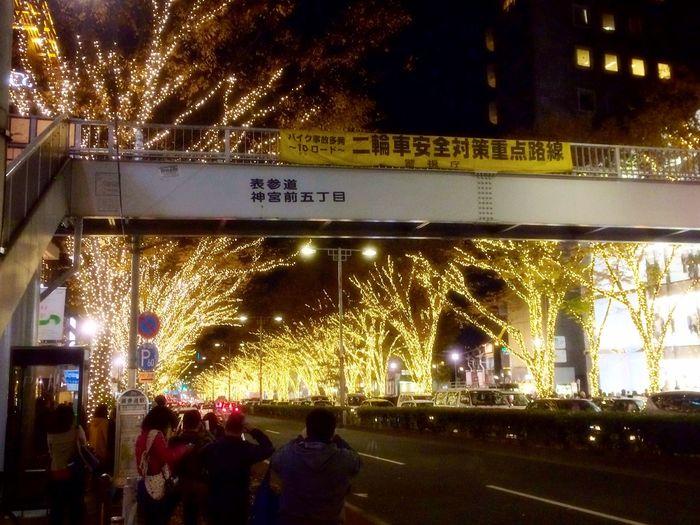 わぉ😳 Tokyo,Japan Omotesando Beautiful 並木道