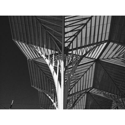 Love Architecture Art Steel calatravaSquareAndroidsteelartarchitectureinteriorgridinstasizeinstagramersstatigramvscovscocamvsco_hubigersinstagoodinstalentbestbestofvsco16x9best16x9bwdesignlisbonportugal Mentore Calatrava