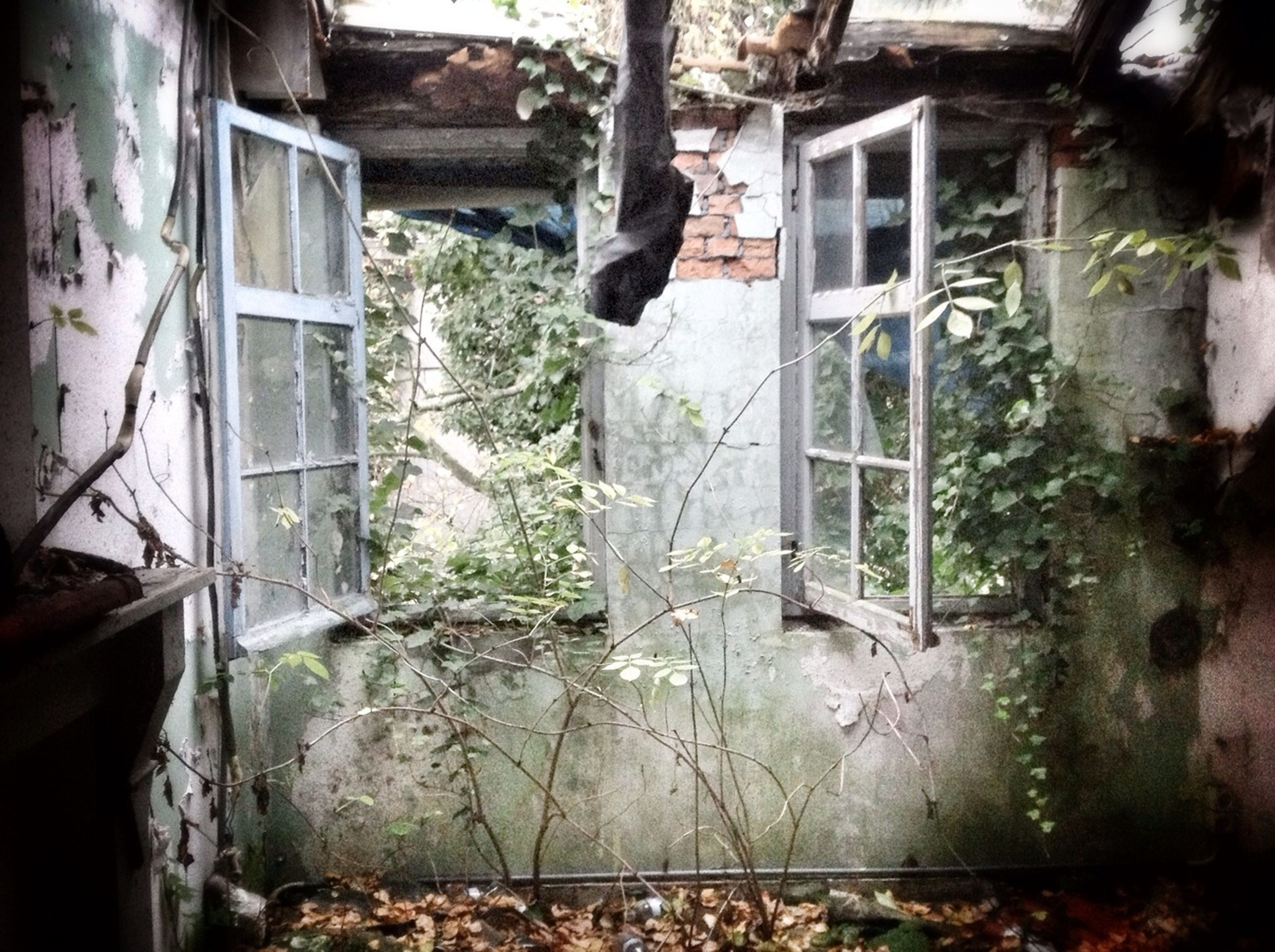 architecture, built structure, building exterior, window, abandoned, house, damaged, obsolete, old, weathered, run-down, deterioration, bad condition, residential structure, door, residential building, wall - building feature, building, broken, destruction