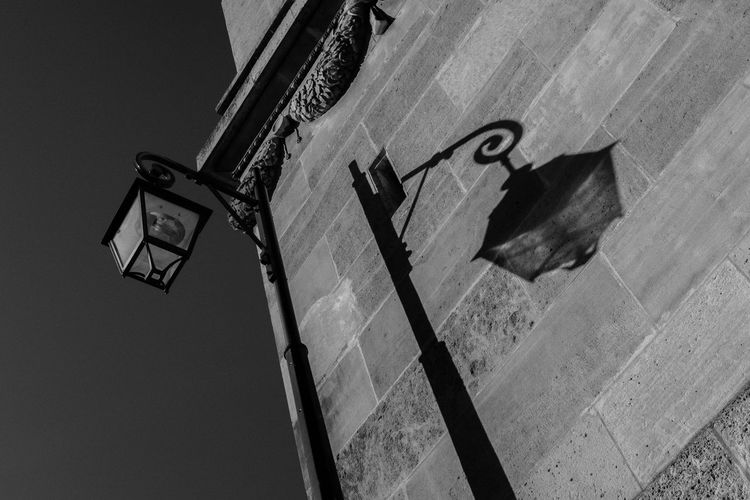 Low Angle View Architecture No People Shadow Built Structure Building Exterior Western Script Day Nature Tilt Sign Communication Wall - Building Feature City Outdoors Lighting Equipment Streetphotography Street Photography Street Blackandwhite Paris Noise Contrast Streetphoto_bw Sunny