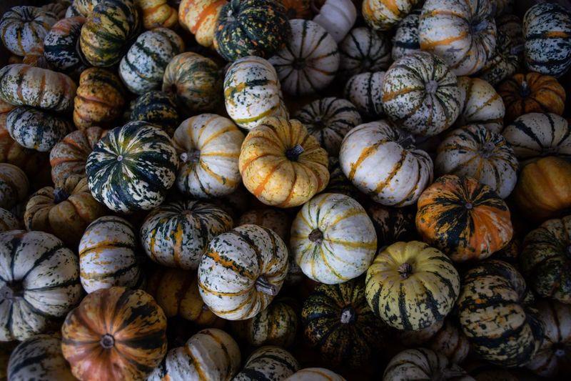 Full frame shot of pumpkins in market for sale