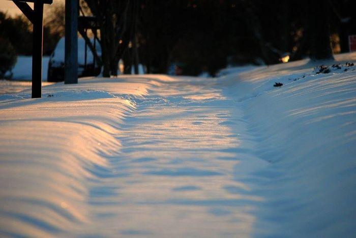 Snow Snow Day Texas Snow Sunrise