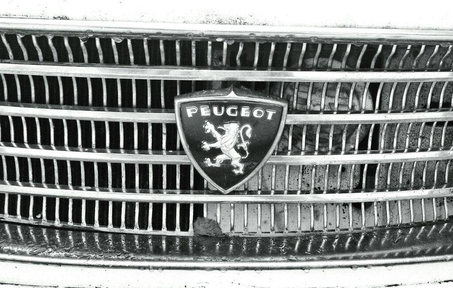 Blackandwhite Peugeot