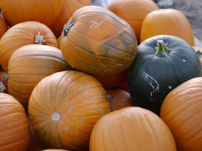 Backgrounds Close-up Day Food Food And Drink For Sale Freshness Full Frame Gourd Halloween Healthy Eating Large Group Of Objects Market No People Orange Color Outdoors Pumpkin Raw Food Retail  Squash - Vegetable Stack Still Life Vegetable
