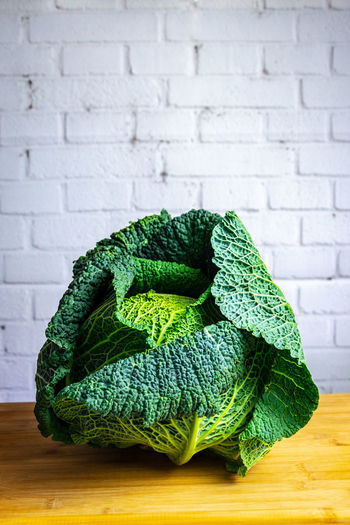 Savoy cabbage on wooden desk, white brick wall background Green Color Brick Wall Wall - Building Feature Indoors  Wall Brick Textile Table Still Life No People Material Close-up Pattern Green Cabbage Savoy Cabbage Kale Plant Based Foods Vegetarian Food Healthy Eating