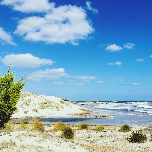 Sky Water Cloud - Sky Land Beach Sea Scenics - Nature Sand Horizon Plant Outdoors Sunlight Nature