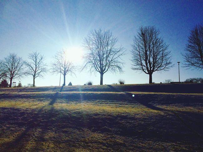 Beautiful Skyline 🙏🏼 Sunlight Sky Landscape Beauty In Nature First Eyeem Photo