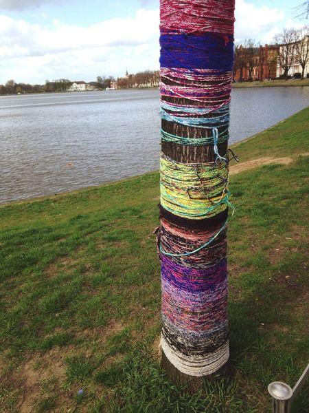 Urban Knitting Kniffiti Yarn Bombing Guerilla Knitting  Street Art Tree Lake Pfaffenteich Schwerin
