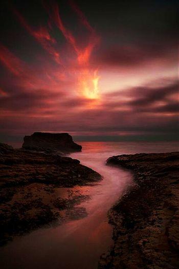 Santa Cruz Ca. Hello World Check This Out Enjoying The Sun Photobyafriend