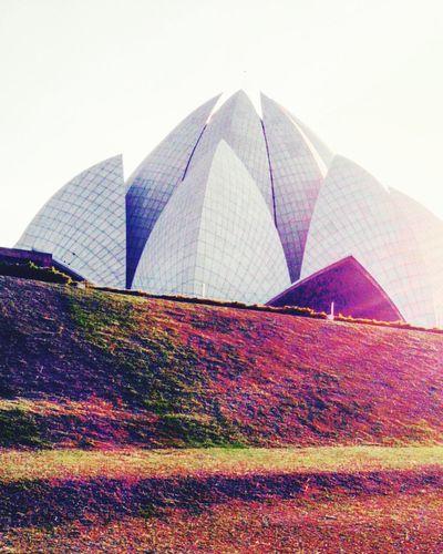 """Lotus"""" delhi"""