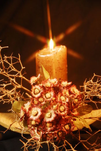 Burning Candle Celebration Christmas Christmas Decoration Close-up Flame Glowing Heat - Temperature Illuminated Indoors  Night No People Thorns Thorns🌹