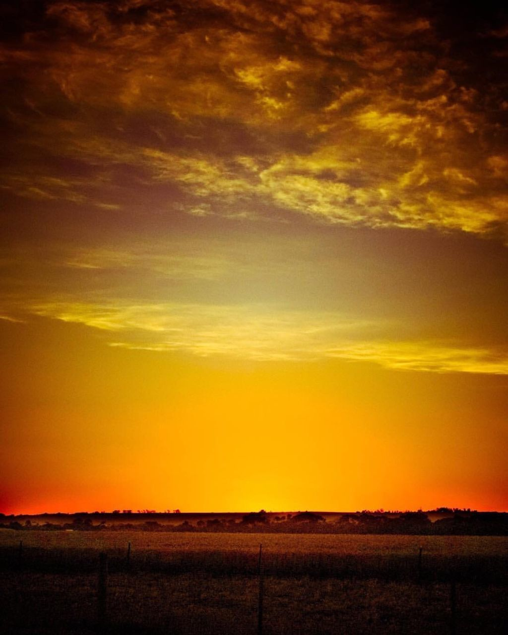 sunset, scenics, tranquil scene, beauty in nature, nature, tranquility, silhouette, sky, orange color, landscape, dramatic sky, no people, cloud - sky, outdoors, field, sun, yellow, day
