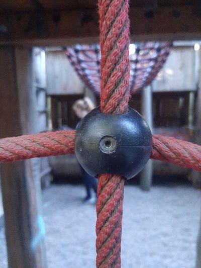 Hanging Red