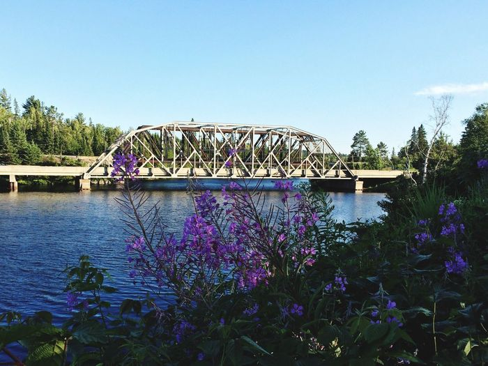 Beautiful sites off Highway 17! Northern Ontario POV Of Dee First Eyeem Photo Nature On Your Doorstep