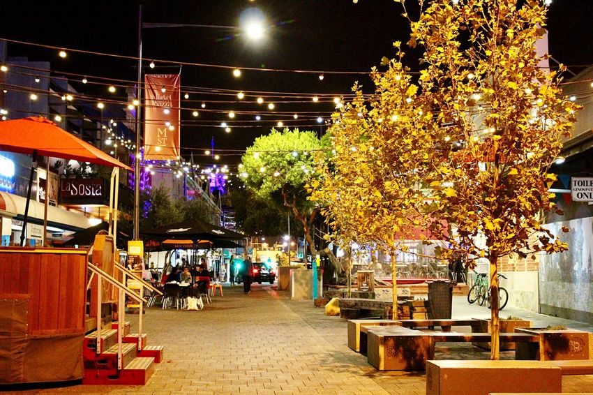 Nighlife Market Night Illuminated Tree Outdoors Architecture Built Structure Building Exterior No People Nature City Sky EyeEmNewHere