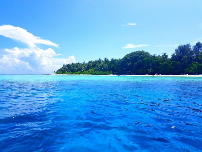 Layers of blue ocean near an island in Maldives Maldives Vacation Ocean Blue Water Layer Shallow Deep Sea Tropical Climate Water Blue Tree Nature Scenics Beach Vacations Cloud - Sky Tranquility Beauty In Nature Summer Outdoors Sky No People Tranquil Scene Travel Destinations Palm Tree