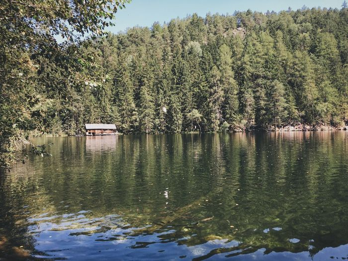 Piburger See Lake ötztal VSCO Vscocam IPhone Picoftheday Forest Nature Austria