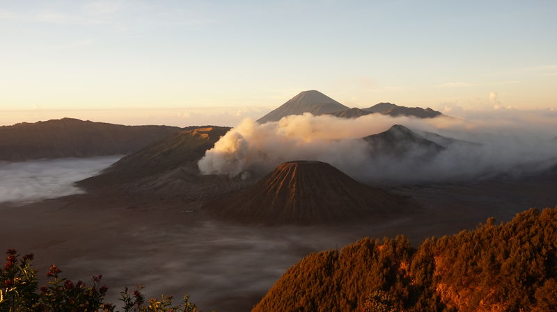 Sun dawn at Mount Bromo INDONESIA Mount Bromo Java Volcano Breathtaking Early Morning Early Bird Red Caldera Mountain Fog Morning Sunset Tree Landscape Nature Beauty In Nature Beauty