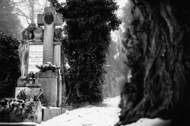 Black And White Black And White Photography Cemetery Grave Graveyard Memorial No People Religion Sad Sadness Sculpture Sedness Spirituality Statue Tombstone Tree