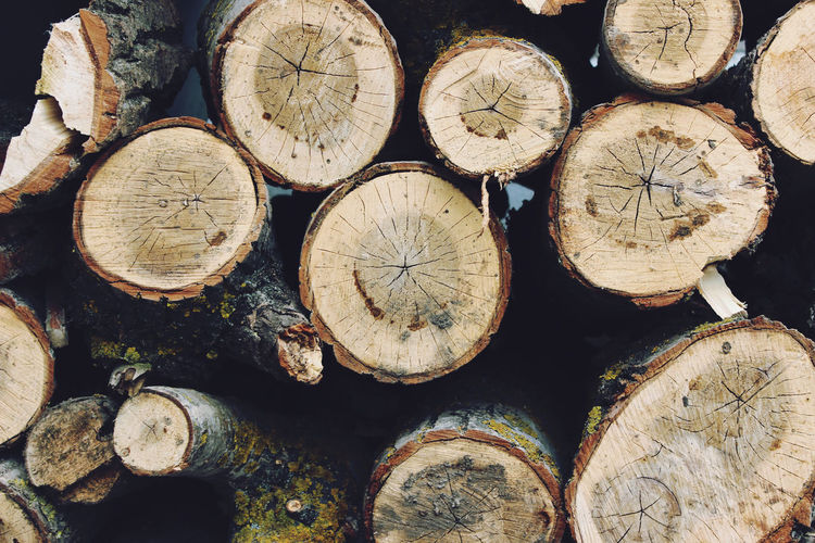 Nature Textured  Abundance Backgrounds Chopped Circle Close-up Deforestation Firewood Forest Fuel And Power Generation Full Frame Large Group Of Objects Log Lumber Industry Nature_collection No People Shape Stack Texture Timber Tree Wood Wood - Material Woodpile