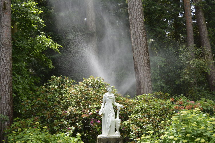 Statue And Fountain In Park