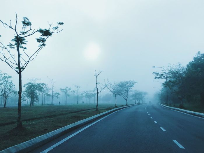 Tree Fog Road Weather Nature Transportation Outdoors No People Tranquility The Way Forward Day Beauty In Nature Landscape Bare Tree Scenics