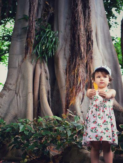 Cute girl holding leaf against tree trunk