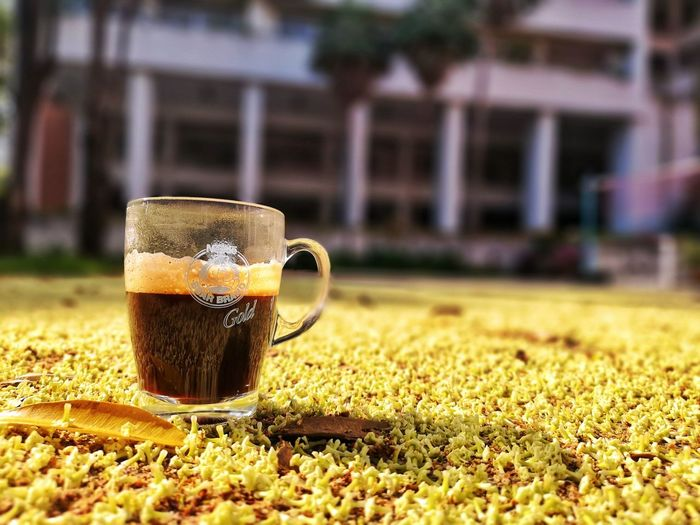 Close-up of coffee on glass against blurred background