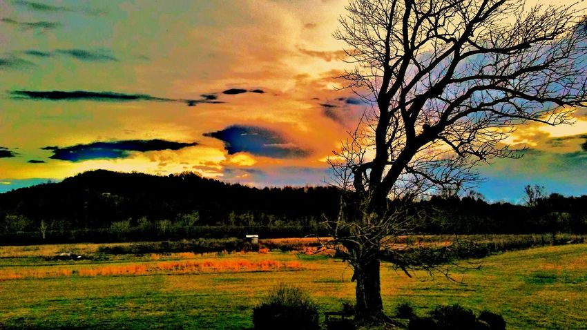 Country living Countryside Peace Rural Scene Agriculture Dramatic Sky Silhouette Landscape Multi Colored