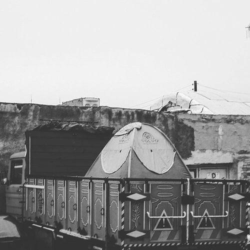 . همیشه برام سوال بود که لاک_پشت و حلزون چطوری خسته نمیشن از حمل خونشون تا اینکه این کامیون رو دیدم و تمام سوالات بی پاسخم به پاسخ رسیدند 😕 . . . . Turtle Snail Truck Home Passengers Tent Iran Qom Bnwiran Bnw Bnw_life Bnw_city