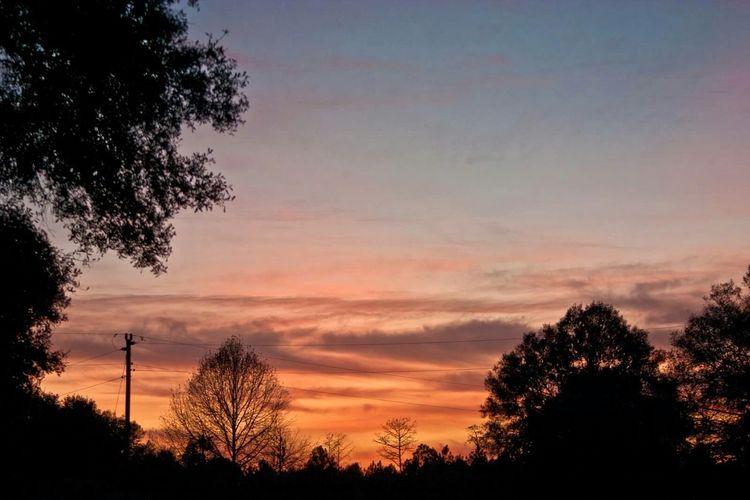 Beautiful sunset Admiring Nature's Beauty Nature November2015 Hobbyphotography Taking Photos Beautiful Nature Outdoor Photography Florida Sky Sky Clouds Fall Sunset Florida Weather Landscape Latepost