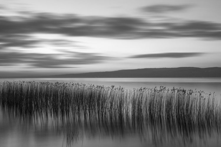 bnw sunset Bnw Bnw_collection Water Lake Tree Reflection Sky Landscape Cloud - Sky Dramatic Sky