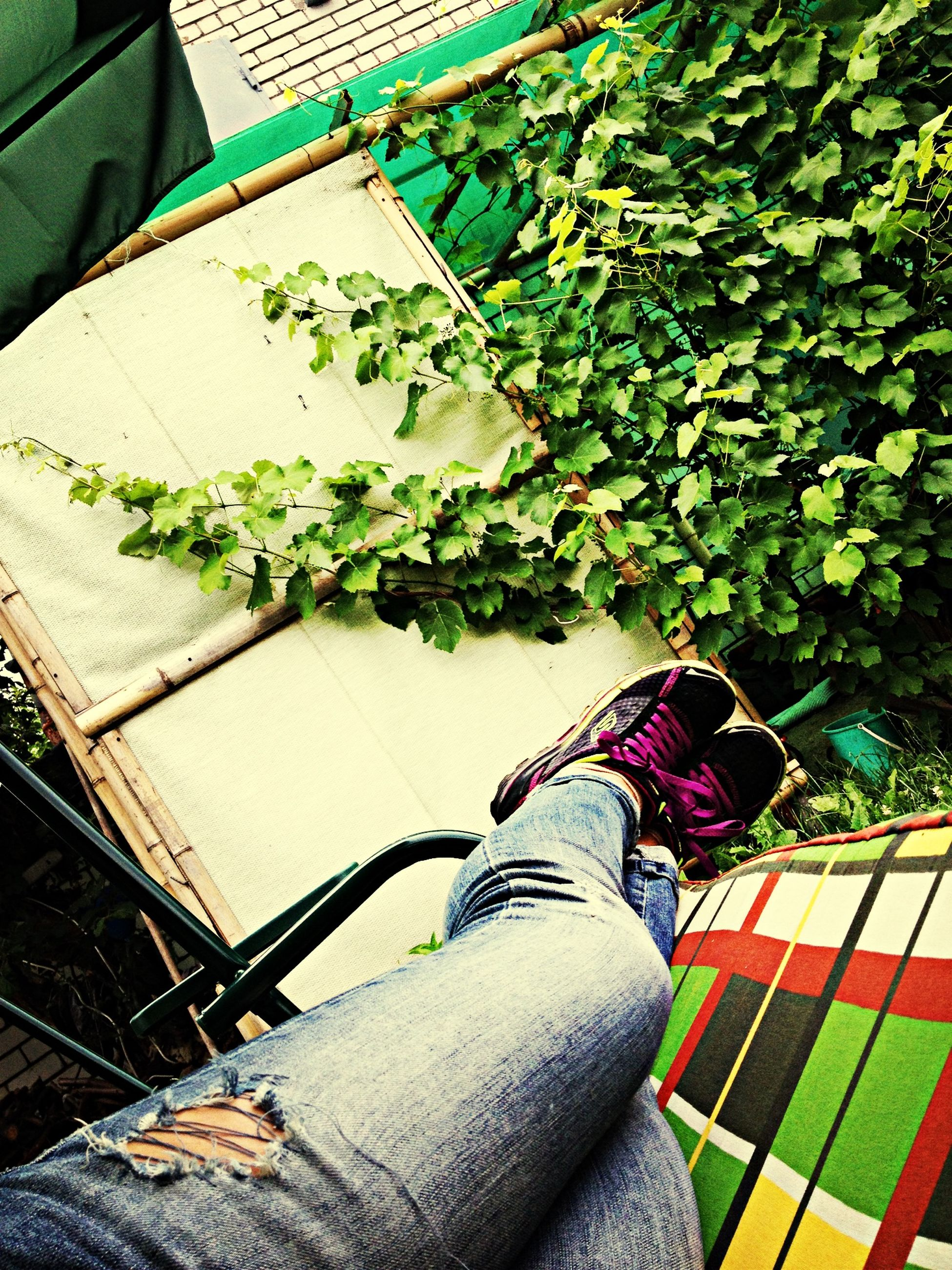 lifestyles, high angle view, person, low section, leisure activity, casual clothing, leaf, men, day, personal perspective, standing, outdoors, shoe, sunlight, railing, jeans, built structure