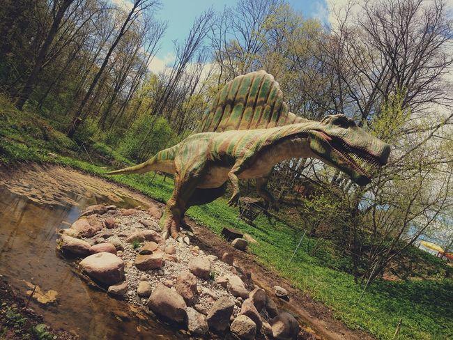 Day Nature Outdoors XPERIA Goodday Tagsforlikes Xperiaphotography Sony Xperia Z3 DinosaursAroundTheWorld Dinosaure Park Walking