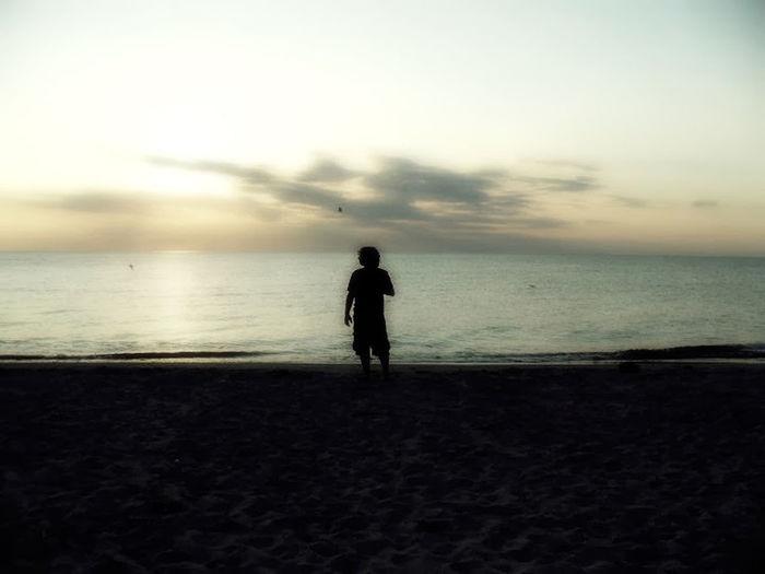 Delaware bay, summer 2012.