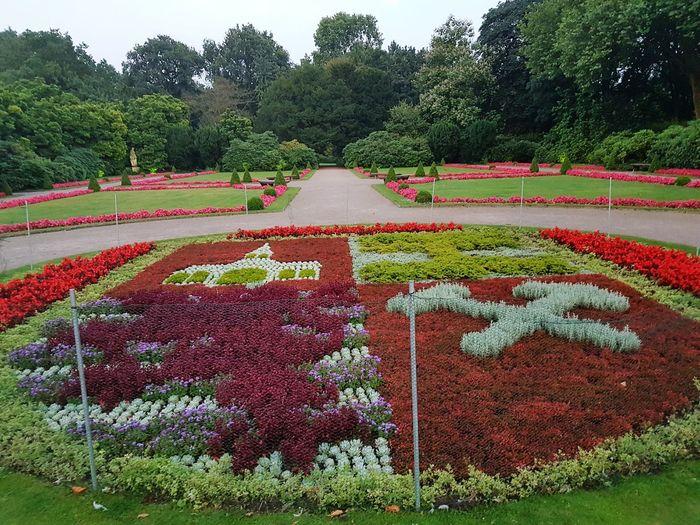 Schlösser In Deutschland Schlösser Wasserschloss Ruhrgebiet Wasserschloss Schloss Berge Schlosspark Stadtwappen Blumen Blumenpracht🌺🍃 Blumen *~* Gelsenkirchen Gelsenkirchen ♡ Schloss