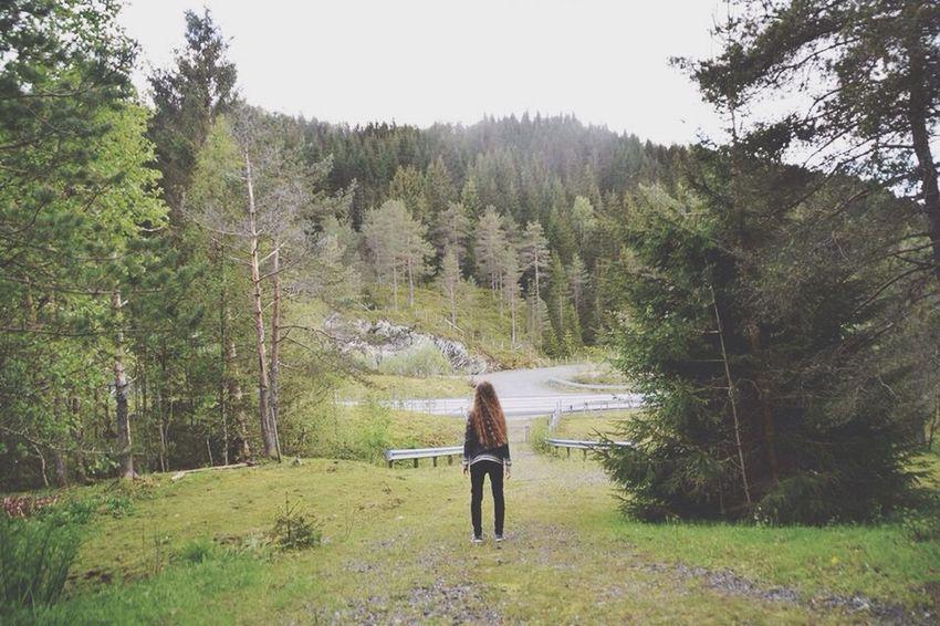 Norwegian Woods🇳🇴 EyeEm Best Shots Enjoying Life Check This Out